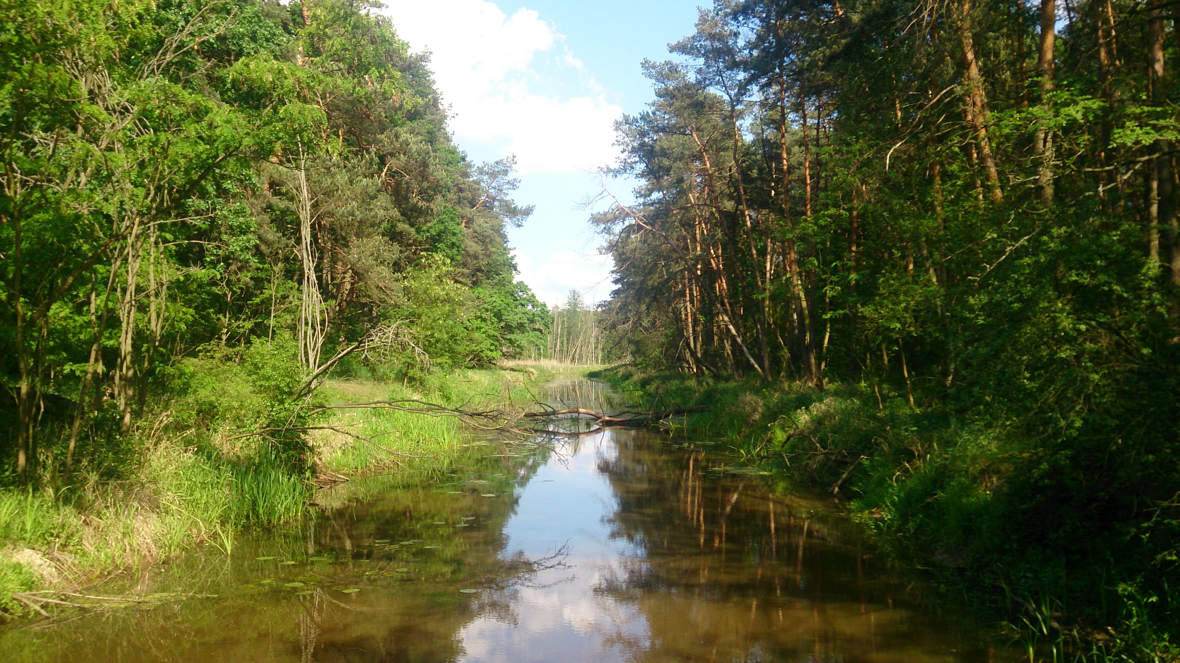 Żelazowa Wola i Kampinoski Park Narodowy | wycieczka rowerowa