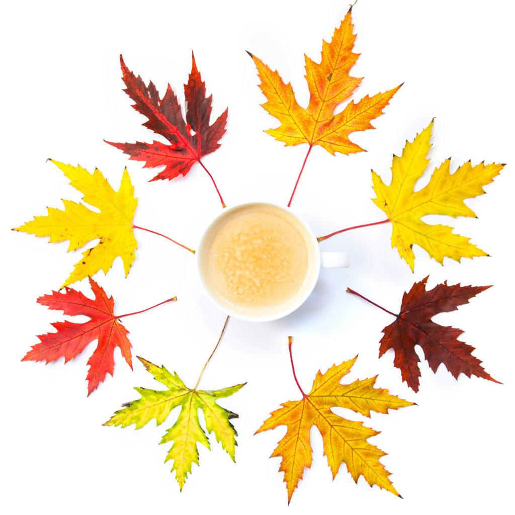 jesienne liście i kawa